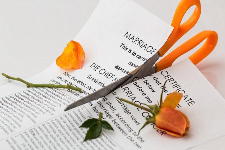 scissors rose
